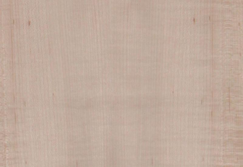 Find American Maple Natural Wood Veneer In India