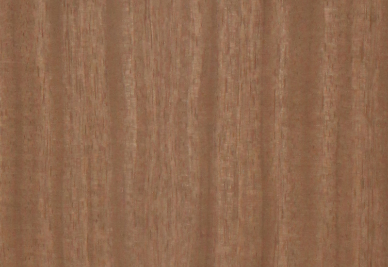 Find African Walnut Natural Wood Veneer In India