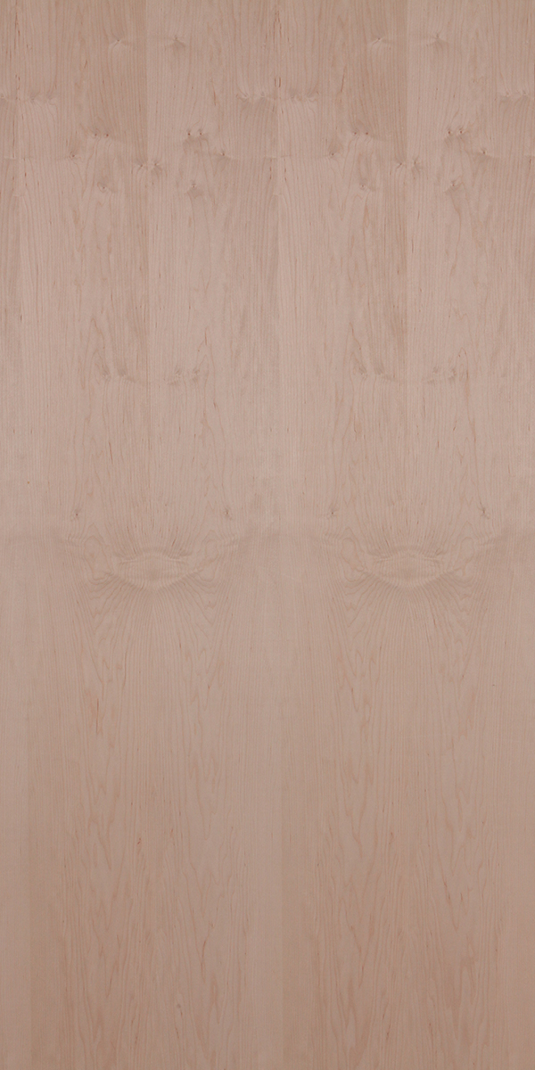 Find Figured Maple Natural Wood Veneer In India Decowood