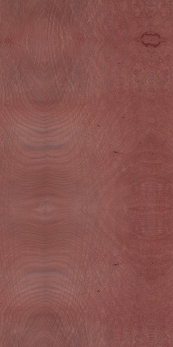 Find Madrona Burl Natural Wood Veneer In India Decowood